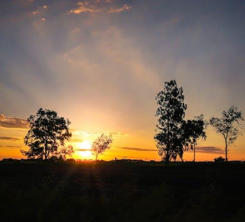Darmowe zdjęcie z galerii z #sunset #wallpaper