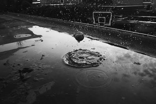 Foto d'estoc gratuïta de aigua, bàsquet, blanc i negre, brut