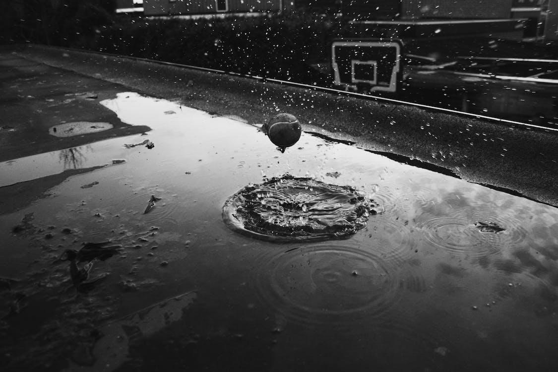 Zdjęcie Body Of Water W Skali Szarości
