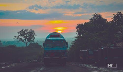 Free stock photo of nature, sunrise