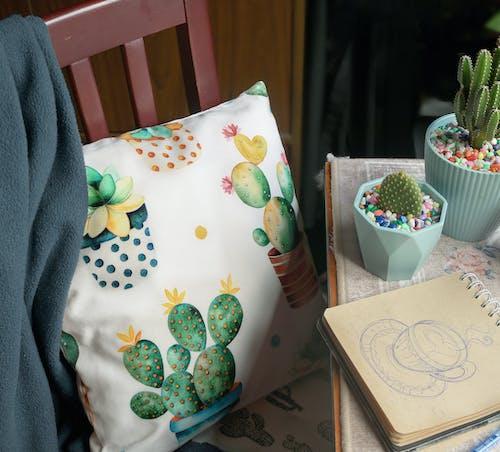Základová fotografie zdarma na téma chlápek, kaktus, nákresy, pracovní stůl