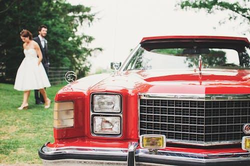 Kostnadsfri bild av bil, bröllop, ford, fordon