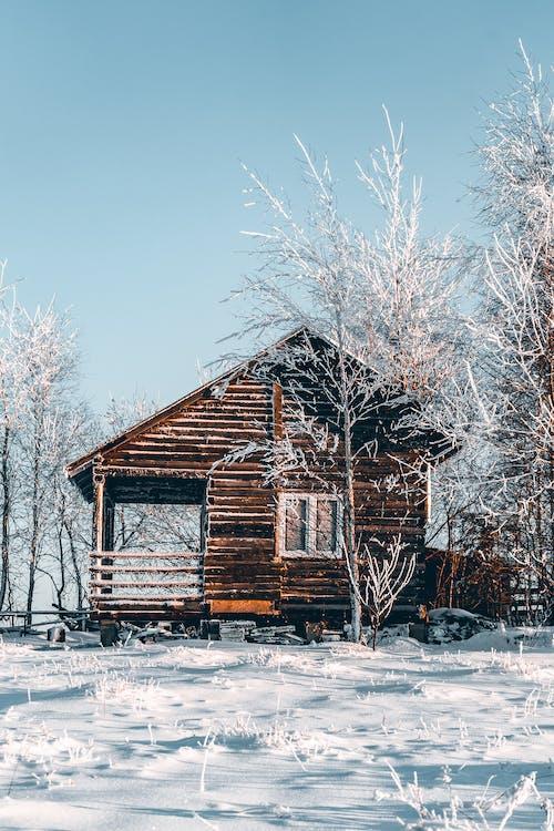 Fotos de stock gratuitas de cabina, casa, frío, invierno
