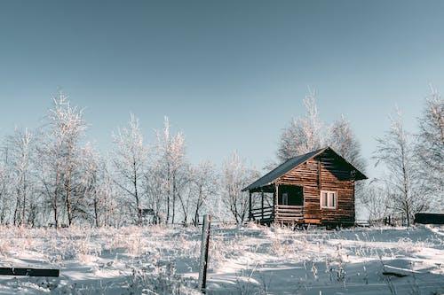 Ilmainen kuvapankkikuva tunnisteilla bungalow, flunssa, lumi, mökki