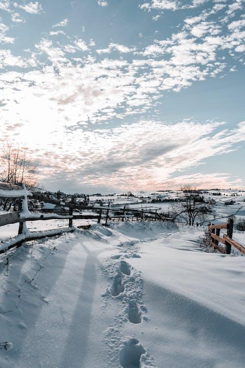 Gratis stockfoto met hek, jaargetij, kou, sneeuw