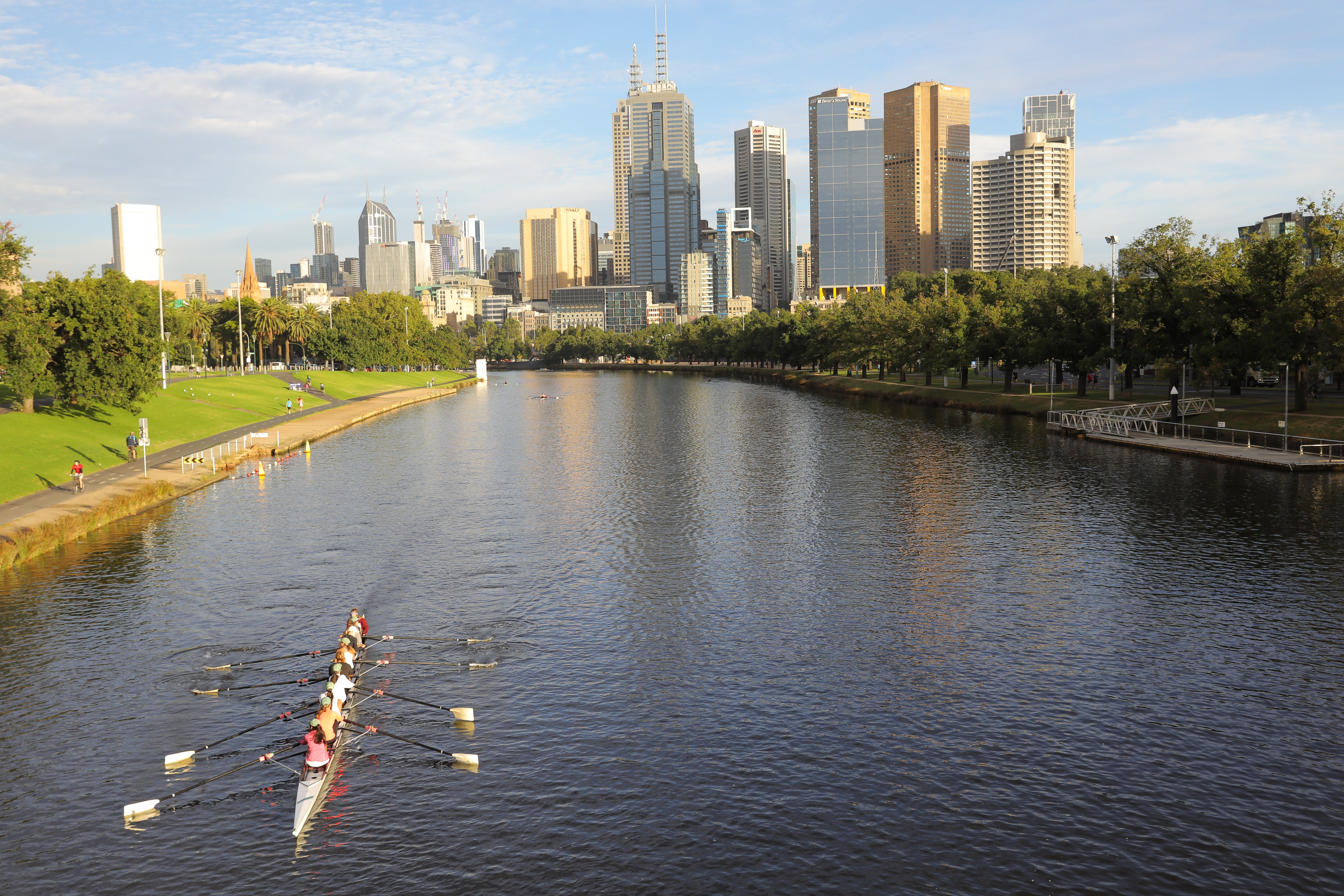 Free stock photo of city, melbourne, river, rower