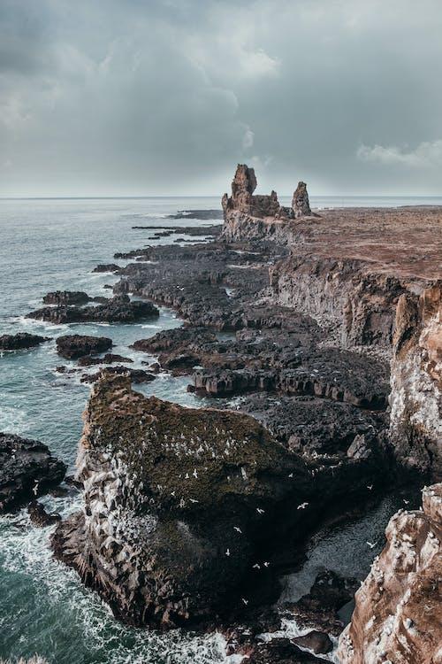 Free stock photo of atlantic ocean, cliffs, iceland