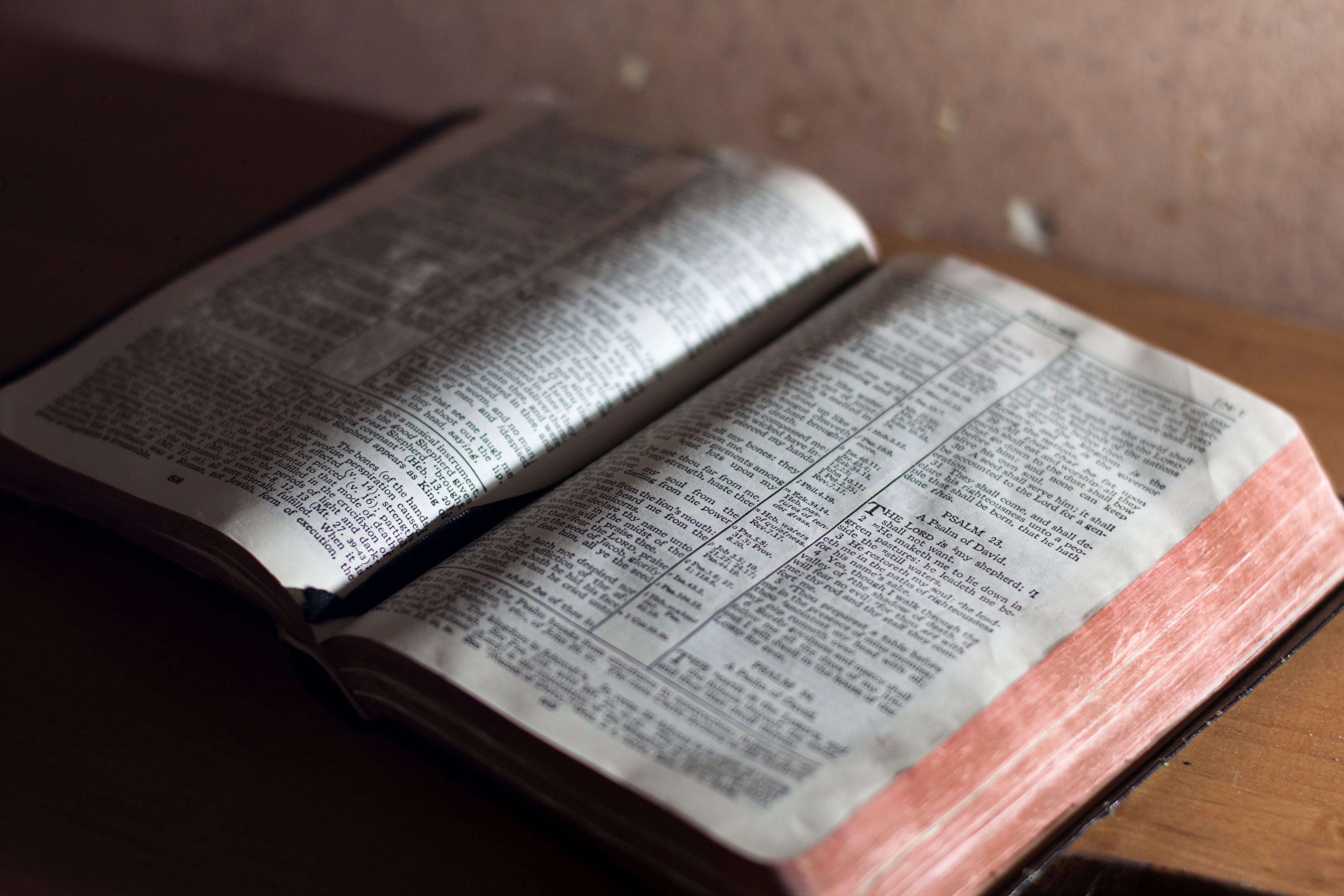 Kostenloses Stock Foto zu bibel, christian, heilig, heiliges buch