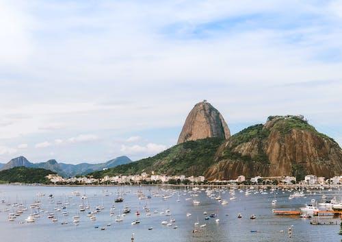 Gratis lagerfoto af bjerg, Brasilien, bugt, by