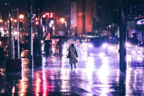 Free stock photo of city street, raining night