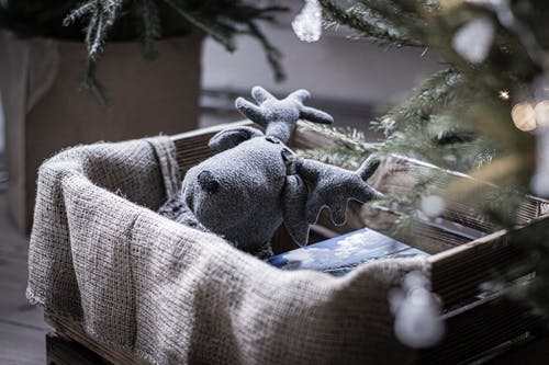Gray Moose Plush Toy on Crate