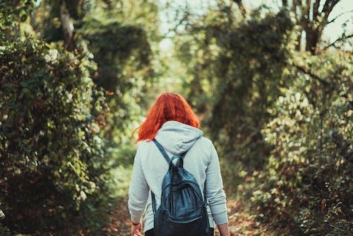 Person Walking in Between of Trees