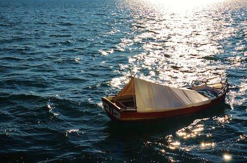 Balık tutmak, balıkçılık, deniz içeren Ücretsiz stok fotoğraf