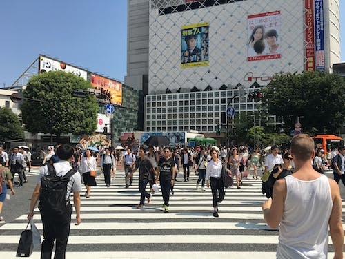 Free stock photo of crossing, japan, shibuya