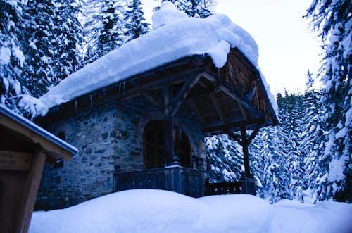 Ingyenes stockfotó 4k-háttérkép, Alpok, erdőség, havas témában