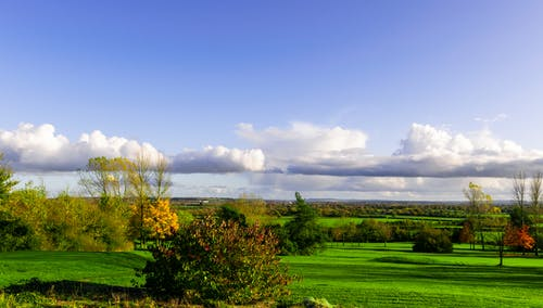 Free stock photo of autumn trees, blue sky, green grass, low clouds