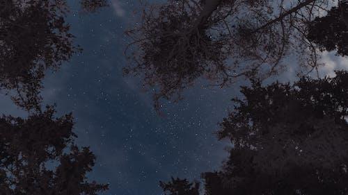 Kostenloses Stock Foto zu glaskogen, kanu, landschaft, langzeitbelichtung
