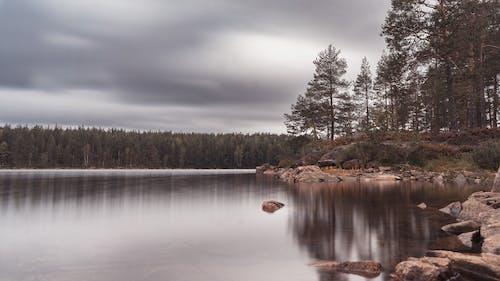 Free stock photo of canoe, cloudy, forest, glaskogen
