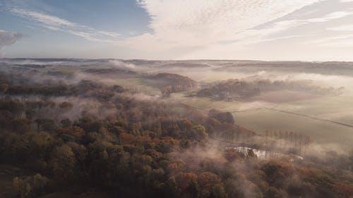 Kostenloses Stock Foto zu außerorts, bäume, bewölkt, drohne erschossen