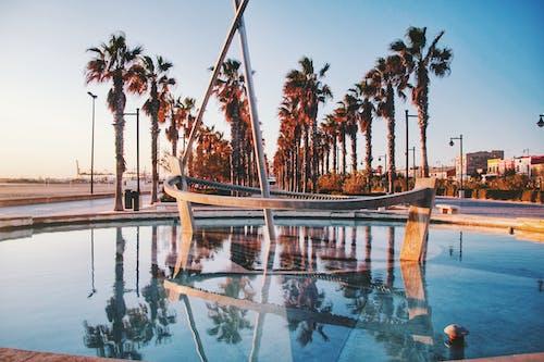 Základová fotografie zdarma na téma fontána, palmy, Španělsko, svítání