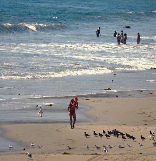 Free stock photo of beach pictures, beaches, diana westberg
