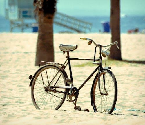 Free stock photo of beach, beach cruiser, beach pictures