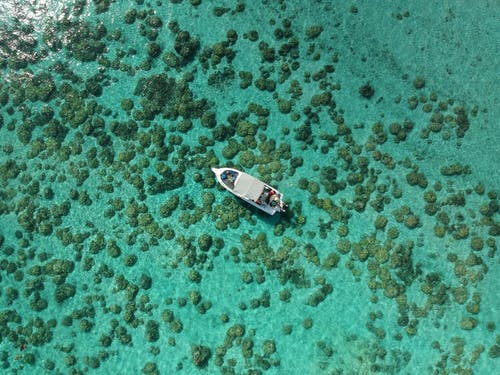 Aerial Photography of a Boat
