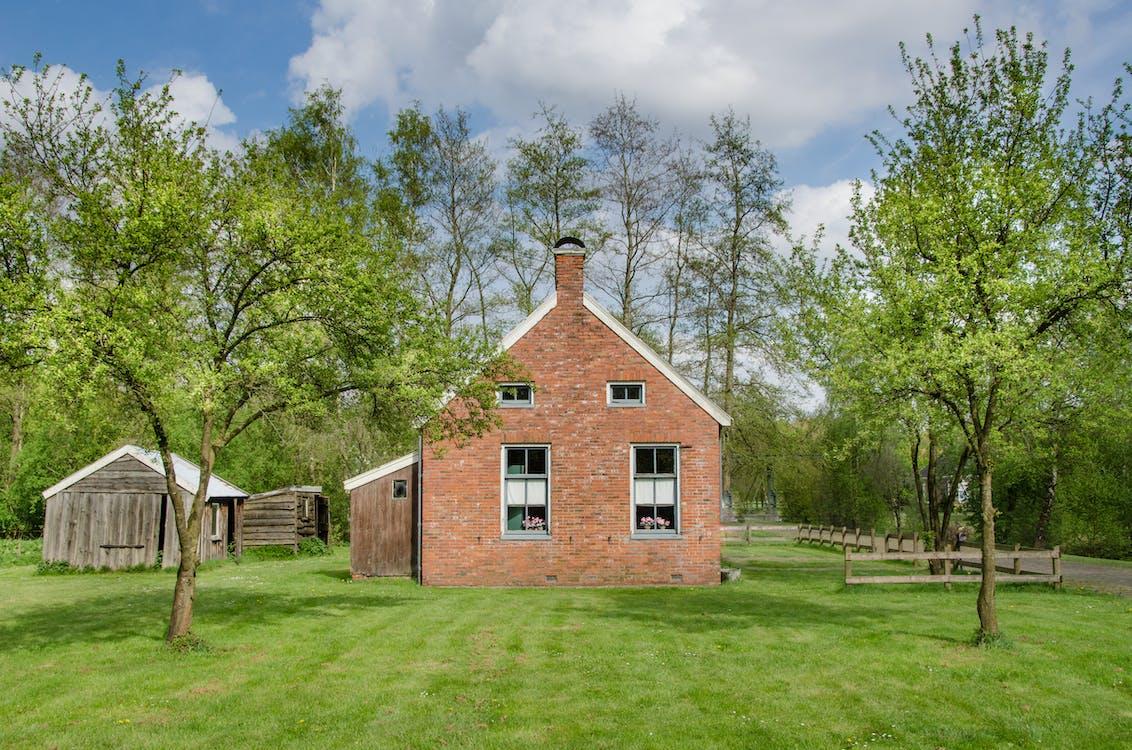 архитектура, Архитектурное проектирование, газон
