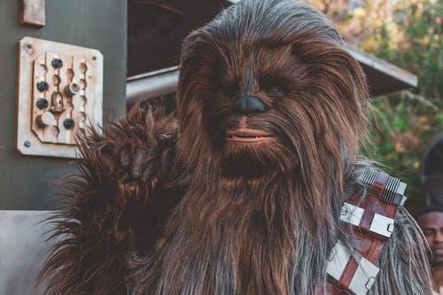 Chewbacca of Star Wars