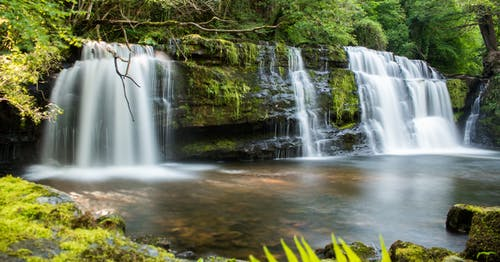 Free stock photo of brecon, brecon beacons, forest