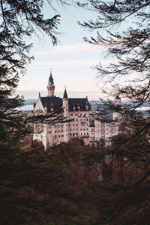 Foto profissional grátis de Alemanha, alto, árvores, atração turística