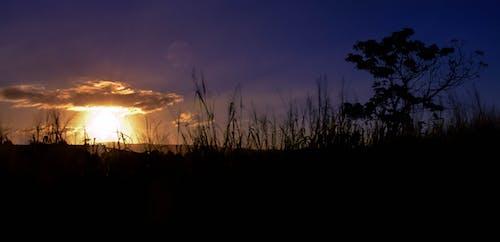 Immagine gratuita di all'aperto, cielo di sera, cloud, formazione delle nuvole