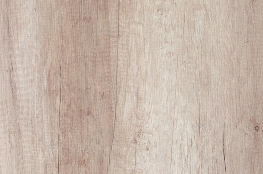 Free stock photo of wood, light, nature, dark