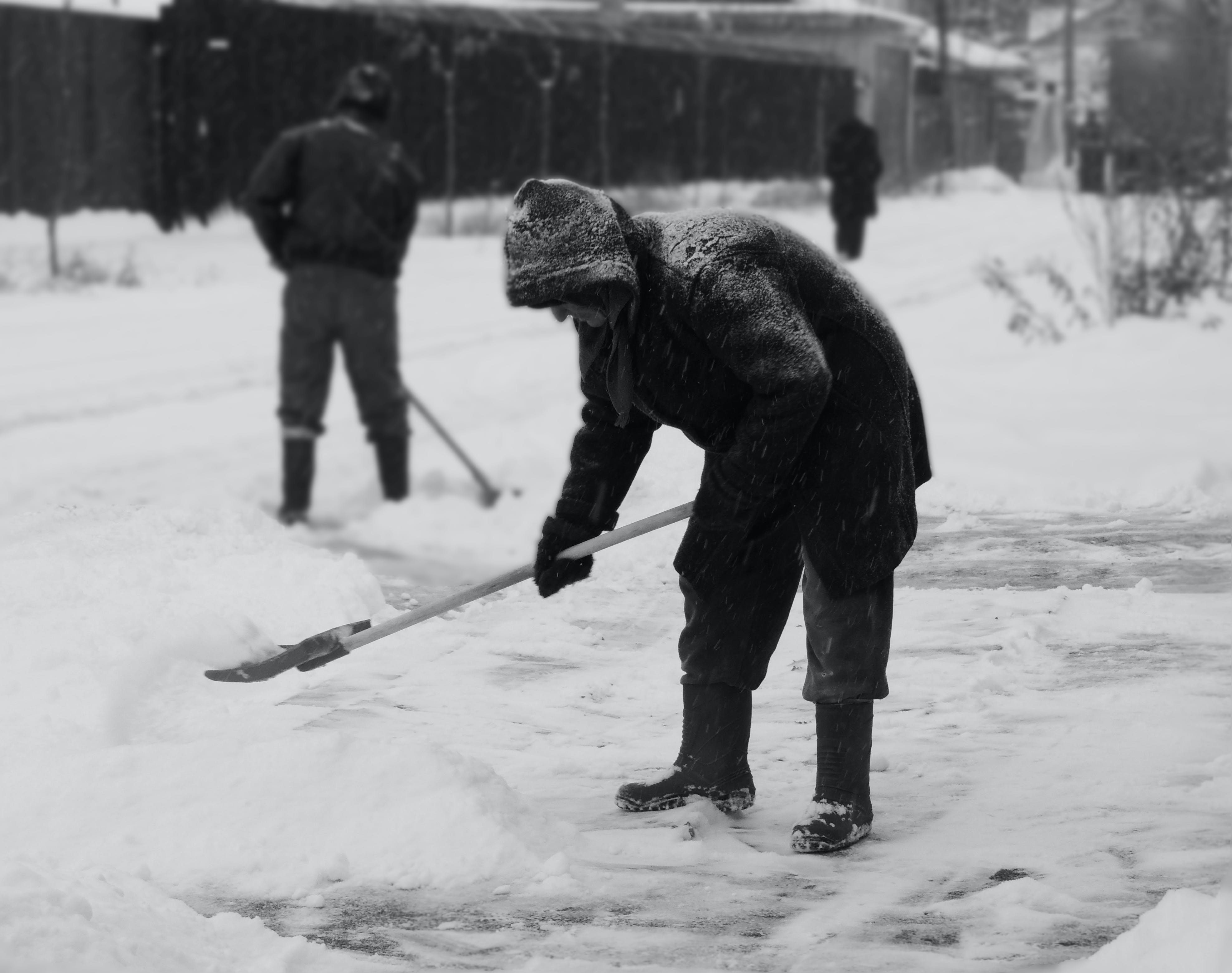 Free stock photo of black, people, snow, white