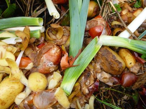 Free stock photo of leek peelings, old potatoes, vegetables peelings