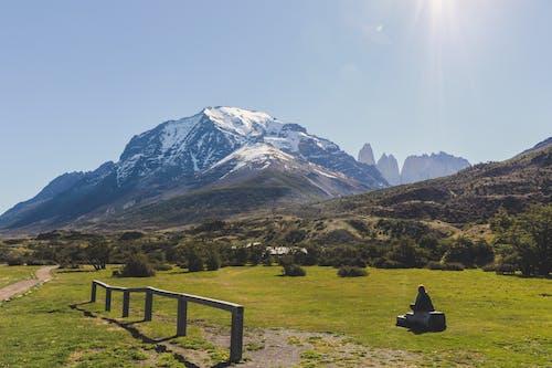 Imagine de stoc gratuită din arbori, aventură, calm, Chile