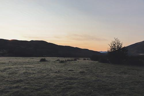 Imagine de stoc gratuită din aventură, camping, cer albastru, Chile