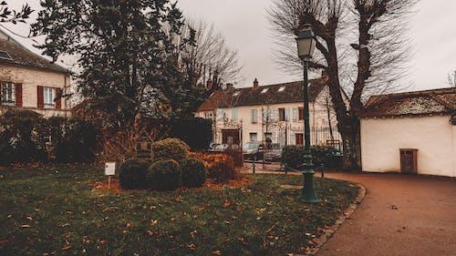 Free stock photo of autumn, city, city centre