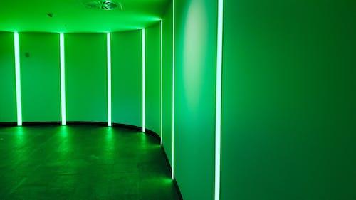 ホール, 壁, 廊下, 明るい緑色の無料の写真素材