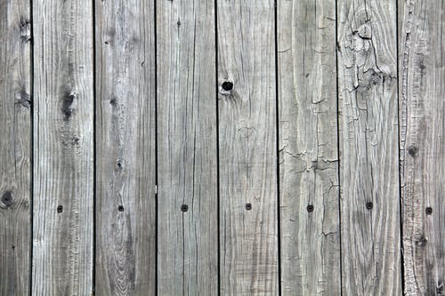 Free stock photo of background, desktop wallpaper, wood, wood fence