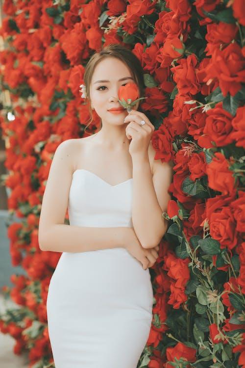 Základová fotografie zdarma na téma bílé šaty, červené kytky, červené růže, dívání