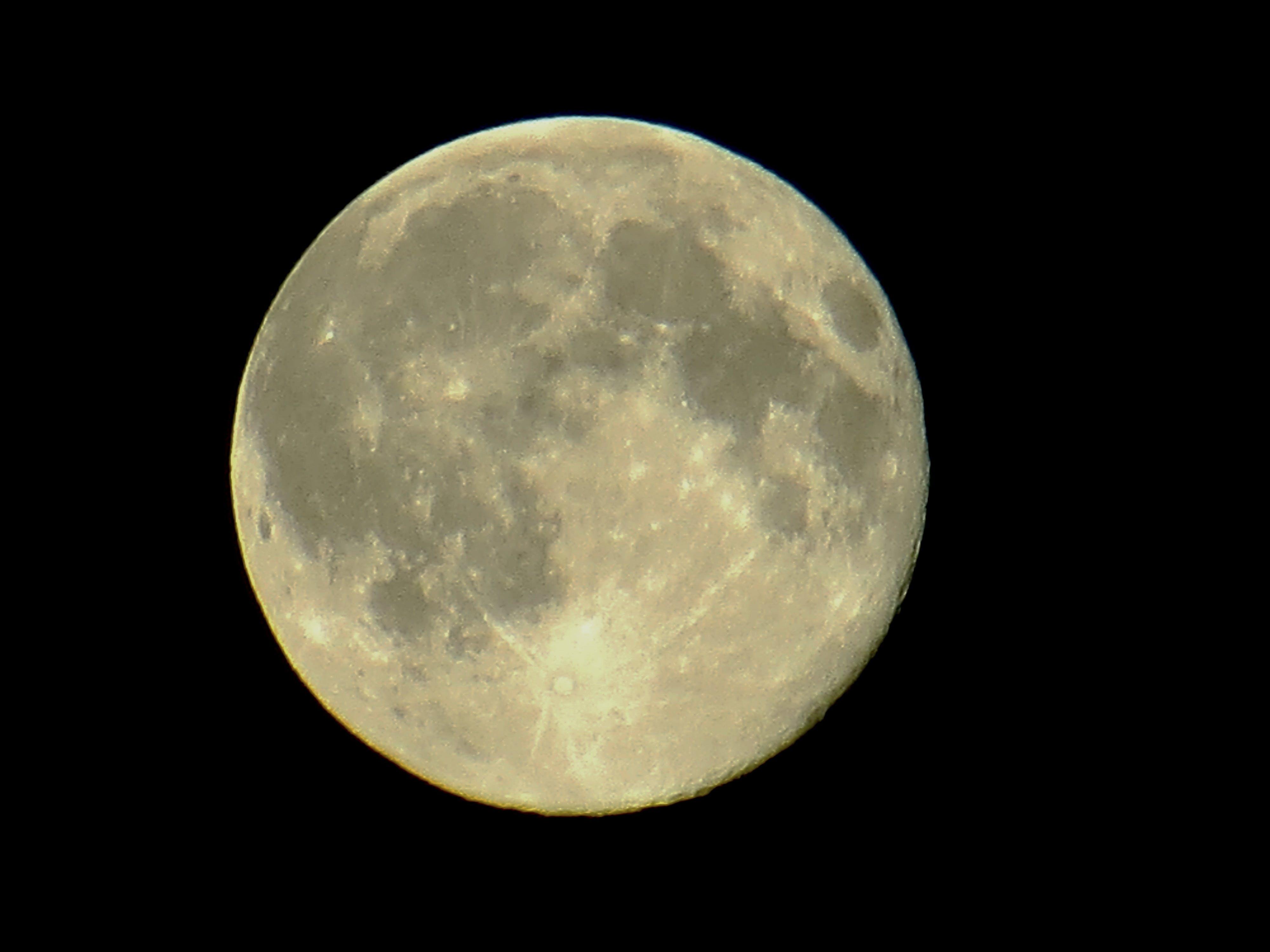 Free stock photo of full moon, moon