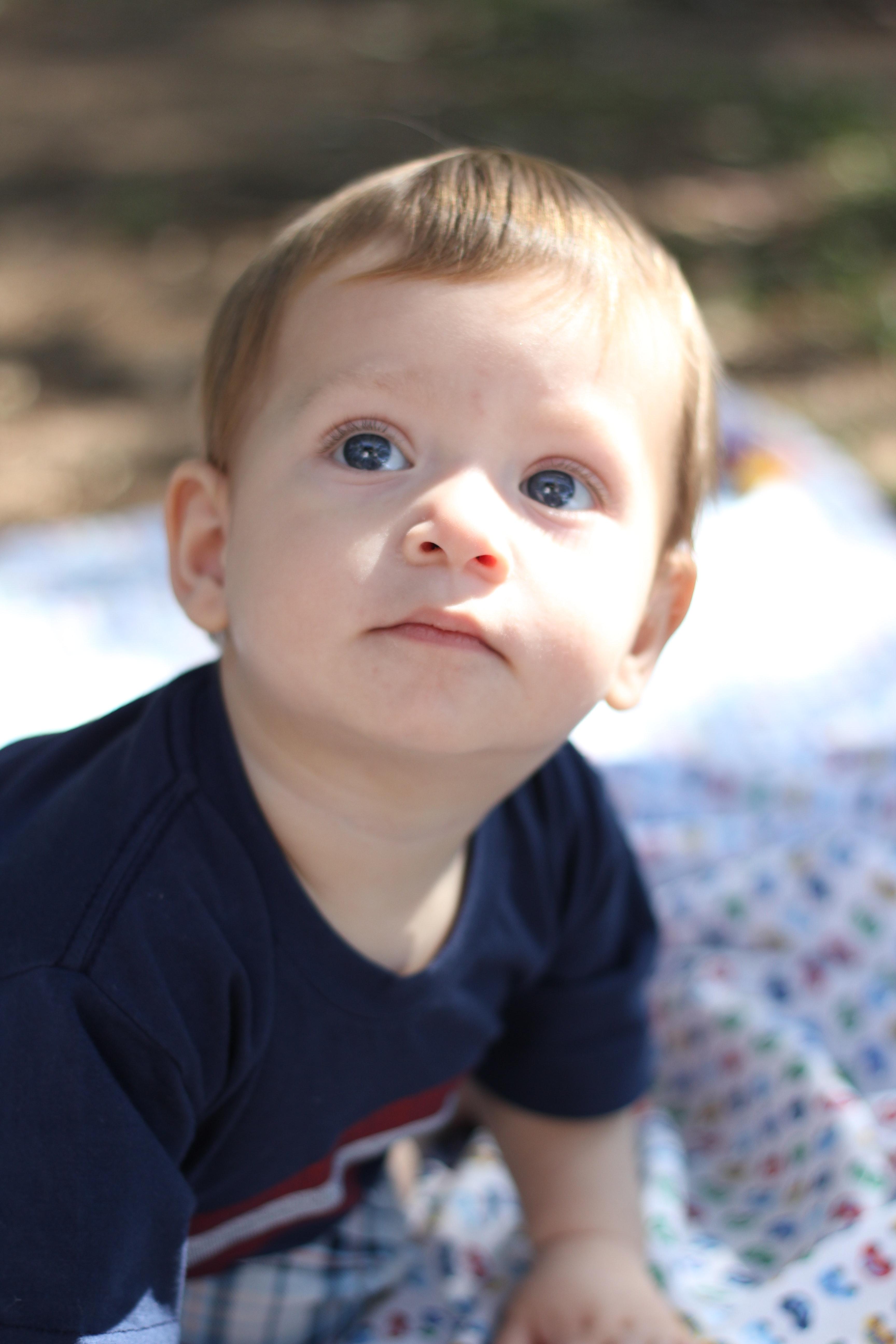 free stock photo of baby, baby boy, blue
