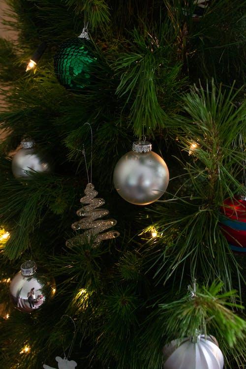 Kostenloses Stock Foto zu chritmas-baum, familie, schöne ferien, weihnachten