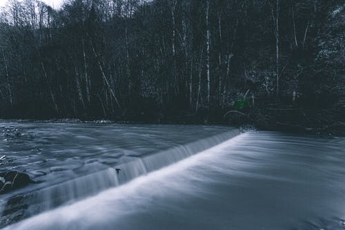 Free stock photo of blue, davos, forest, long exposure