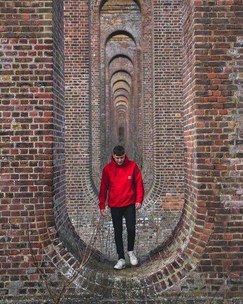 Free stock photo of brick walls, bricks, creative, creative photography