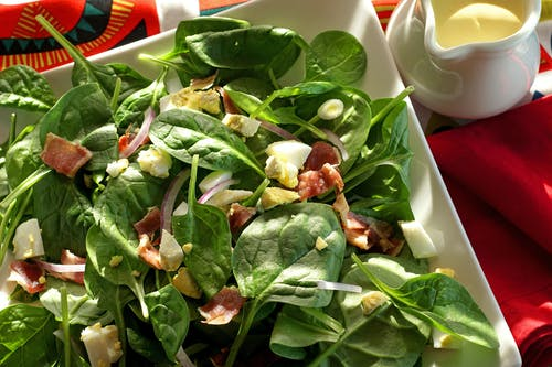 Free stock photo of spinach salad