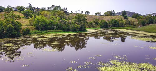 Free stock photo of creek, dam, drone