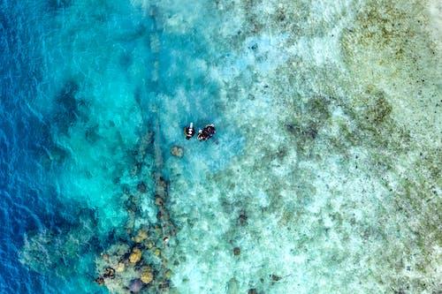 Bird's Eye View OF Ocean Water