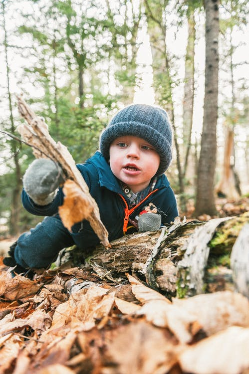 Photo Of Toddler Playing In The Woods